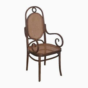 No. 17 Armchair by Michael Thonet for FMG, 1960s