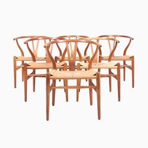 Patinated Oak Wishbone Chairs by Hans J. Wegner for Carl Hansen & Søn, 1950s, Set of 6