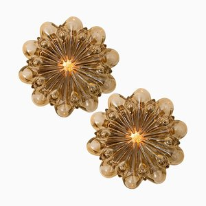 Amber Glass Sconces by Helena Tynell for Glashütte Limburg, 1960s, Set of 2