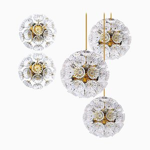 Starburst Flower Sputnik Wall Lights & Chandeliers, 1960s, Set of 5