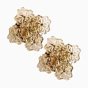 Glass and Brass Floral Wall Light by Hillebrand, 1960s