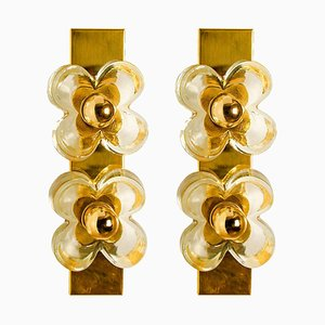 German Brass & Glass Flower Wall Lights by Sische, 1960s, Set of 2