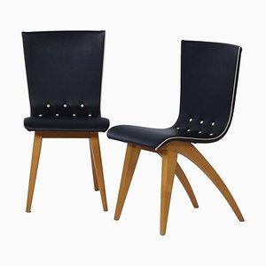 Niederländische Esszimmerstühle aus gebogenen Ahornholz von Van Os Culemborg, 1950er, 2er Set