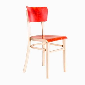 Painted Bentwood Dining Chair from Thon, 1950s