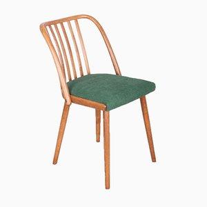 Green Dining Chairs by Antonín Šuman for TON, 1960s, Set of 4