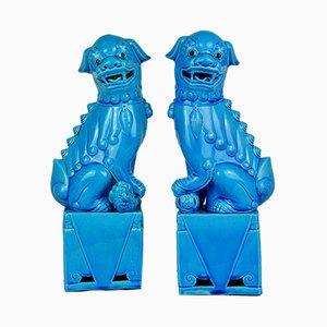 Sculptures Foo Dog Bleues en Porcelaine, 1950s, Set de 2