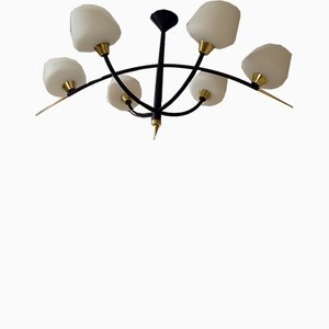 French Chandelier, 1950s