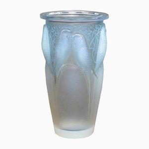 Ceylan Vase von R.Lalique für Lalique, 1920er
