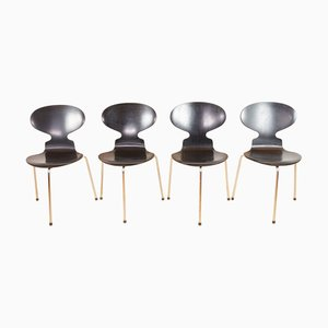 Chaises Ant par Arne Jacobsen pour Fritz Hansen, 1968, Set de 4