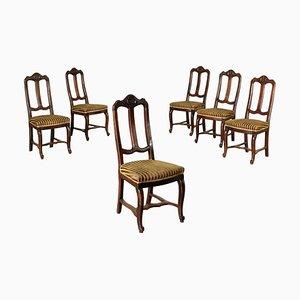 Esszimmerstühle aus Umbertine Nussholz, Italien, 1800er, 6er Set