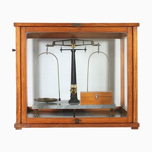 19th Century Italian Analytical Scale from Albertoni & C. Milano