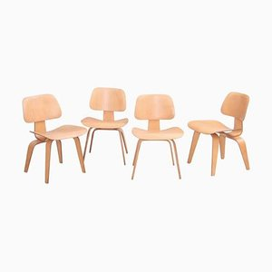 Matched DCW Dining Chairs by Charles and Ray Eames for Evans, 1950s, Set of 4