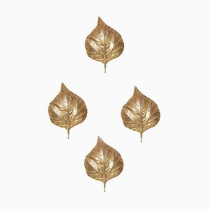 Large Rhubarb Leaf Brass Wall Light or Sconce by Tommaso Barbi, 1970s