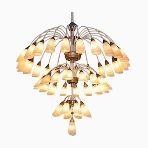 Large Italian Chandelier with 49 Tulip Glass Shades, 1950s