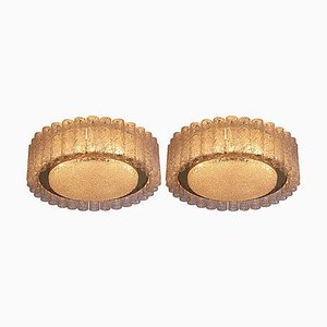 Glass Flush Mounts or Sconces with Brass Surround from Doria Leuchten, 1960s, Set of 2