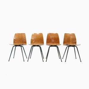 Bundeswehr Stühle, 1960er, 4er Set