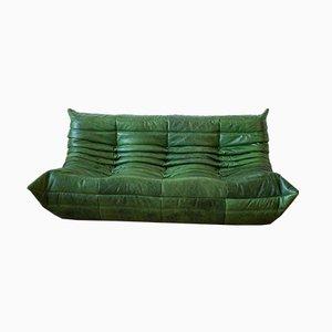 Grünes Vintage 3-Sitzer Togo Ledersofa von Michel Ducaroy für Ligne Roset
