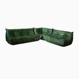 Grünes Leder Togo Wohnzimmer Set von Michel Ducaroy für Ligne Roset, 1970er, 3er Set