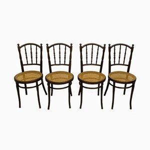 Antike Esszimmerstühle aus gebogenem Holz & Stroh von Jacob & Josef Kohn, 1900er, 4er Set
