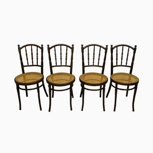 Antique Curved Wood and Straw Dining Chairs from Jacob & Josef Kohn, 1900s, Set of 4