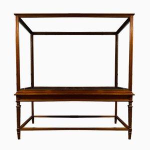 Antique Victorian Museum Display Cabinet