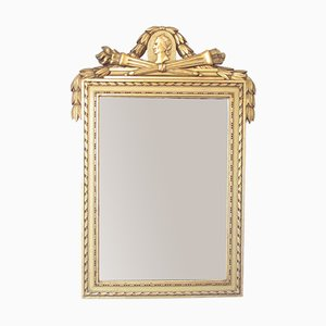 French Louis XVI Gilt Wall Mirror, 1900s