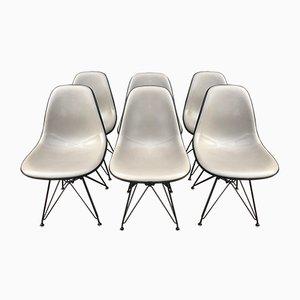 Sedie da pranzo DSW vintage di Charles Eames per Herman Miller, anni '70, set di 6