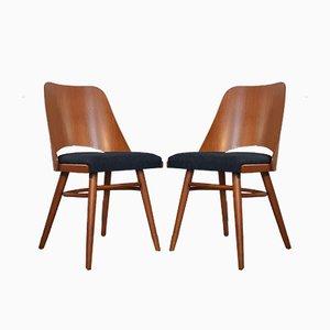 Tschechische Mid-Century Modell 514 Esszimmerstühle aus Buche & Stoff von Radomir Hofman für TON, 1964, 6er Set