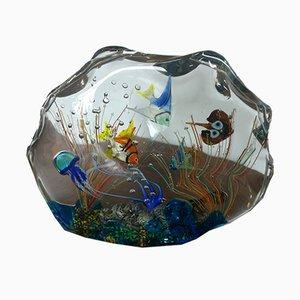 Petit Aquarium par Alberto Donà