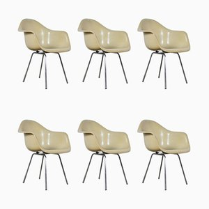 DAX Dining Chairs by Charles & Ray Eames for Herman Miller, 1960s, Set 6