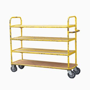 Vintage Industrial French Shelf on Wheels, 1950s