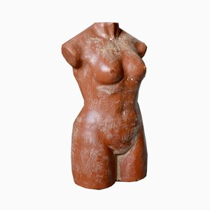 Terracotta Bust of Venus, 1940s