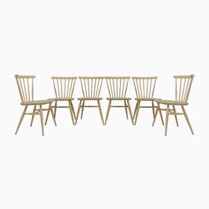 Chaises de Salon Vintage en Hêtre Clair et Hêtre par Lucian Ercolani pour Ercol, 1960s, Set de 6