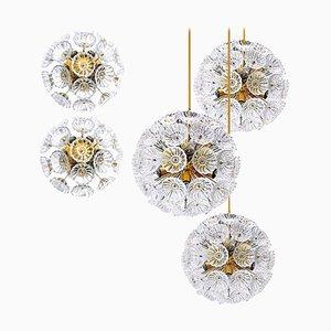 Starburst Flower Sputnik Lampen Set, 1960er, 5er Set