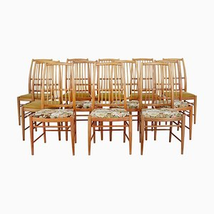 Napoli Dining Chairs by David Rosen for Nordiska Kompaniet, 1950s, Set of 12
