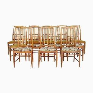 Napoli Esszimmerstühle von David Rosen für Nordiska Kompaniet, 1950er, 12er Set