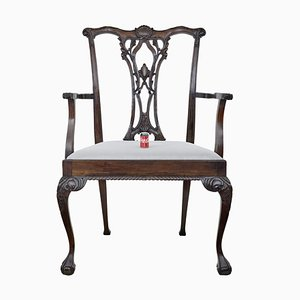 Oversized Chippendale Style Mahogany Dining Chair for Shop Display