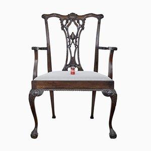 Übergroßer Chippendale Stil Esszimmerstuhl aus Mahagoni für Ladenvitrine