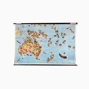 Karte von Australien mit Flora und Fauna, 1960er