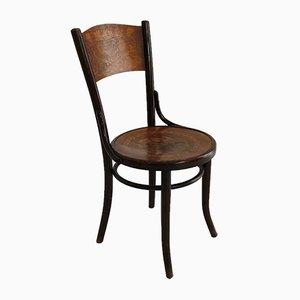 Sedie da pranzo Art Nouveau in legno curvato di Thonet, anni '20, set di 4