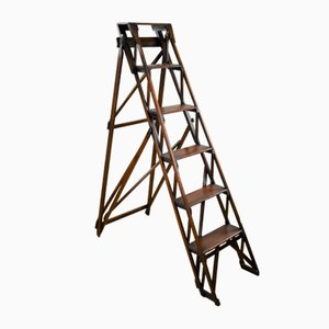 Late 19th Century Hatherley Step Ladder