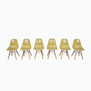 Vintage DSW Chairs by Charles & Ray Eames for Herman Miller, 1970s, Set of 6
