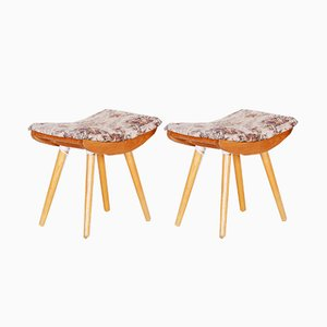 Mid-Century Ash Stools, 1960s, Set of 2