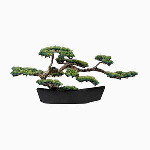 Bonsai in Planter by Estrid Ericson for Svenskt Tenn, Japan, 1950s