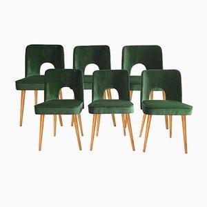 Grüne Esszimmerstühle mit Samtbezug von Lesniewski für Slupskie Fabryki Mebli, 1962, 6er Set