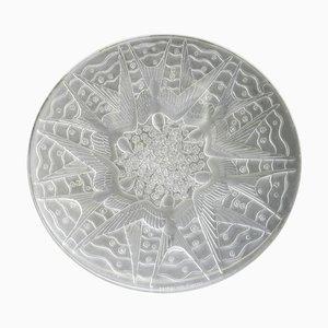 Opalglas Schwalben Schale von Pierre D'Avesn, 1920er