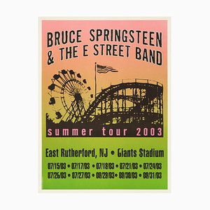 Bruce Springsteen Poster, 2003