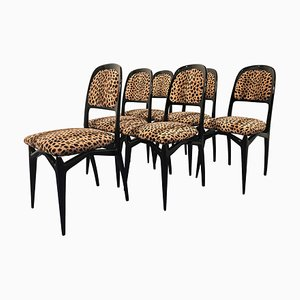 Mid-Century Ebonized Dining Chairs by Vittorio Dassi for Dassi Mobiuli Moderni, 1950s, Set of 6