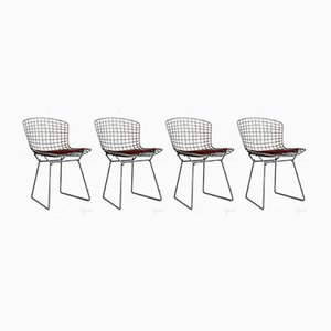 Chrome Dining Chairs by Harry Bertoia for Knoll Inc. / Knoll International, 1962, Set of 4