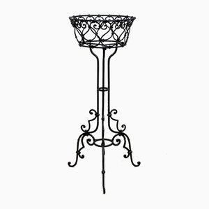 Cache-pot Art Nouveau en Fer Forgé, 1900s